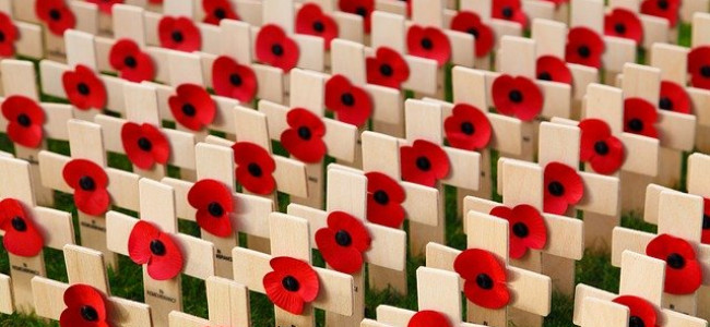 Reading Remembers Those Who Died at War – Armistice Day