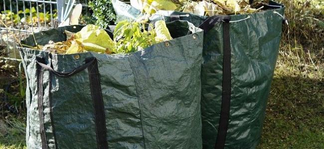 Green Bin Letters Sent to 16,000 Households in Reading