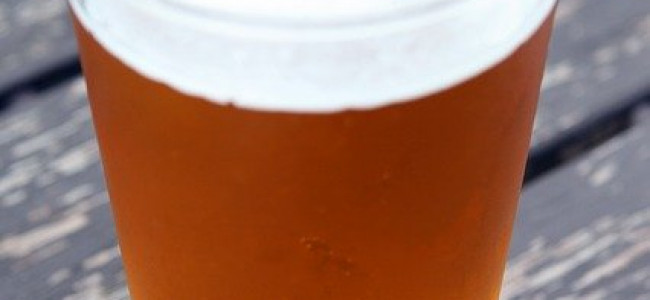 Pubs in Reading Holding Informative Talks By Scientists  Next Week