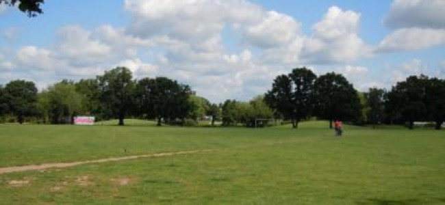 Help Shape Future of Palmer Park