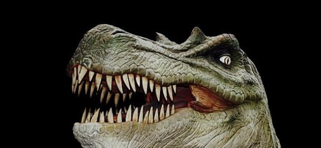 """T Rex Bite """"No Match For a Finch"""""""