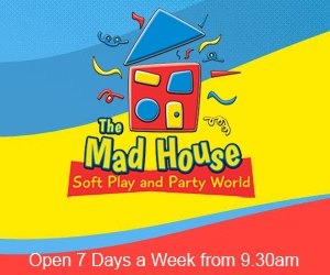The Mad House 300x250