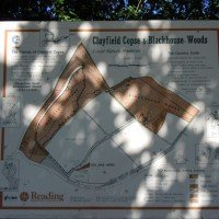 Notice board - clayfield copse