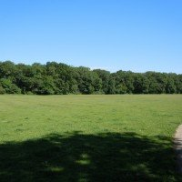 Open Space - clayfield copse