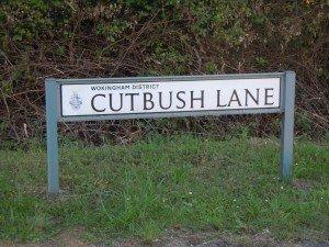 cutbush lane