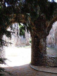 pic 2 - abbey ruins