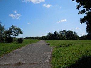pic 5 - ashenbury park