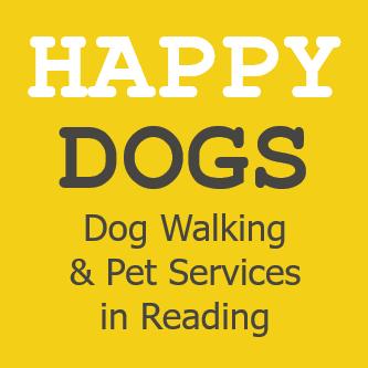 dog walking sniff design basics affordable ready made pet