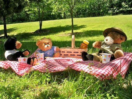 Teddy Bears Picnic in Reading